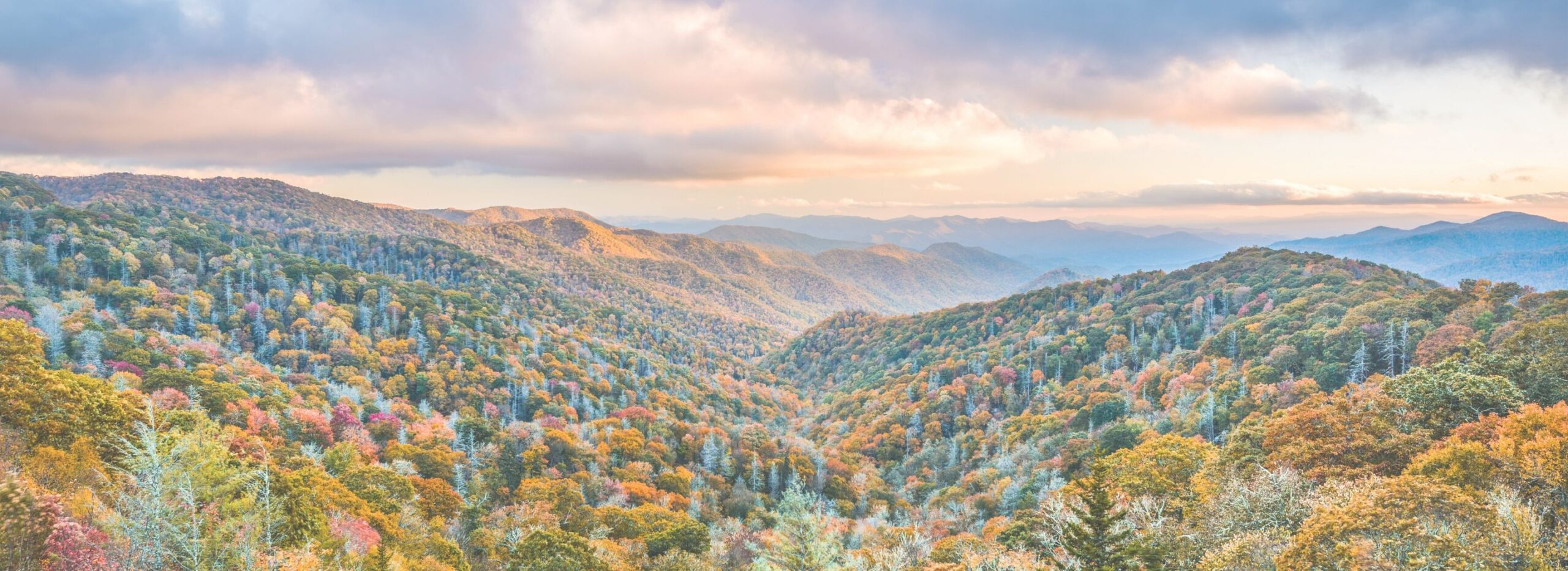 Planning a Trip to the Great Smoky Mountains?